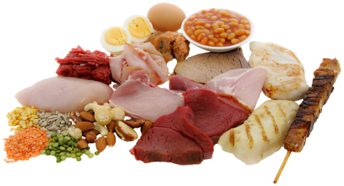 proteina1