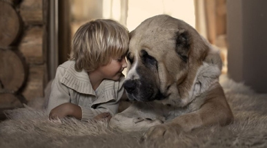 amor-crianca-cachorro