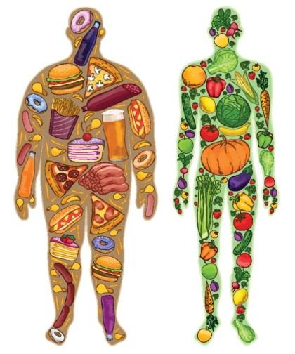 Human, thin, fat. Nutrition, food. Vector illustration
