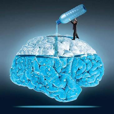 agua cerebro
